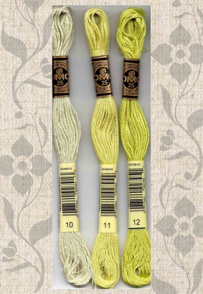 Buy DMC six-stranded embroidery floss 10 Very Light Tender Green, 11 Light Tender Green, 12 - Tender Green