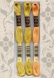Buy DMC six-stranded embroidery floss 17 Light Yellow Plum, 18 Yellow Plum, 19 Medium Light Autumn Gold