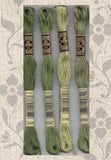 Buy DMC six-stranded embroidery floss 3346, 3347, 3348, 3364 - a forest green series