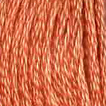 DMC six-stranded embroidery floss - 402 - Mahogany - Very Light