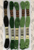 Buy DMC six-stranded embroidery floss 934, 986, 987, 988, 989 Dark Medium Leaf Greens