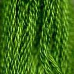 DMC six-stranded embroidery floss - 906 - Parrot Green - Medium