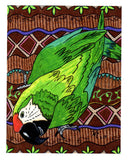 Green parrot 8 x 10 art print for sale at Raspberry Lane Crafts