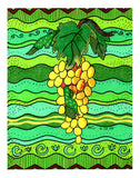 Moscato Giallo Giclee mounted 8 x 10 inch golden yellow grapes on green The Art of Wendy Christine prints for sale.