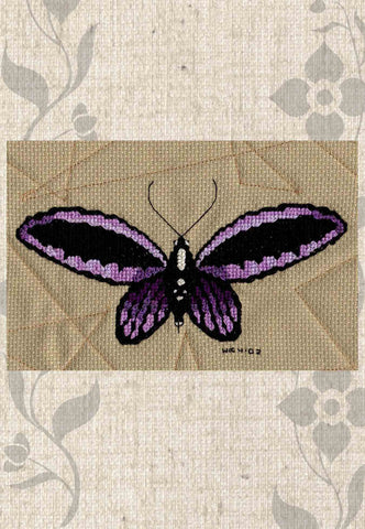 Magic Butterfly Collection Cross Stitch Pattern