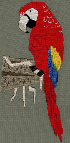 Scarlet Macaw on Clay Cliffs Cross Stitch Pattern