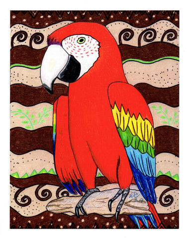 """Scarlet Macaw"" Signed Print"