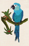 Spix's Macaw Cross Stitch Pattern by Wendy Christine