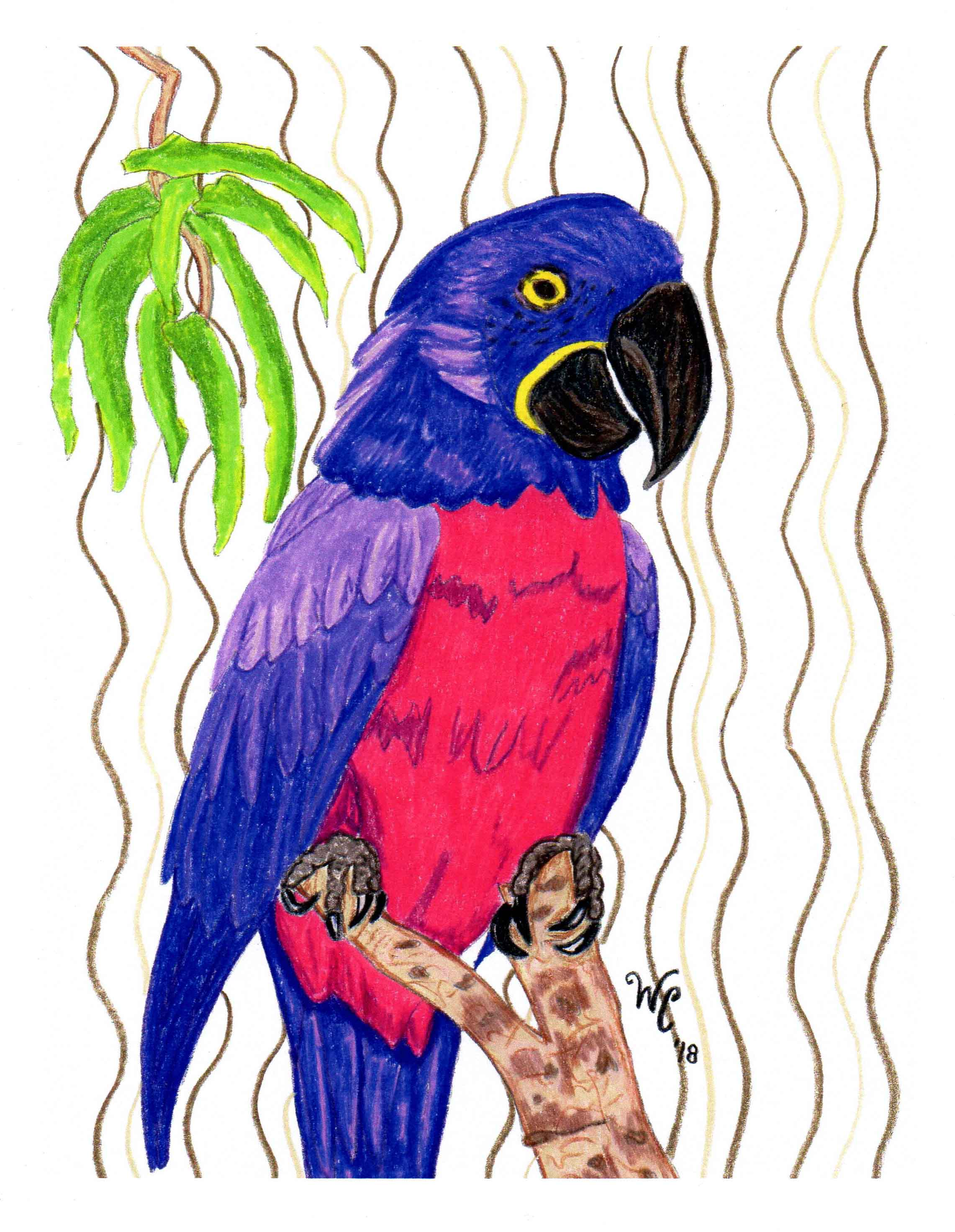 violet macaw purple parrot art print for sale wendy christine