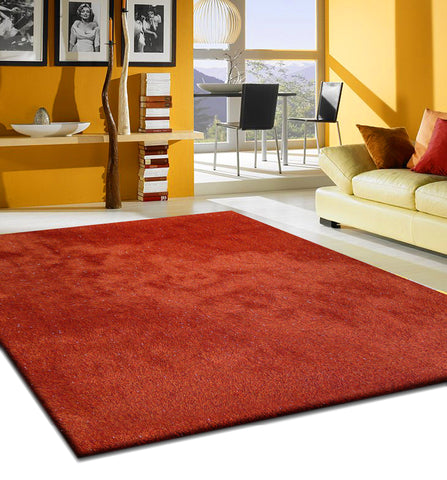 2-Tone Red Long Soft Durable Shag Area Rug