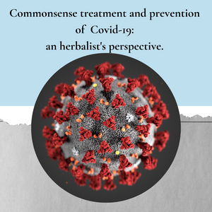 Commonsense prevention and treatment for Covid-19: an Herbalist's perspective