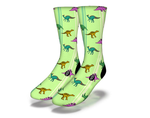 Dinosaur Striped Green Socks