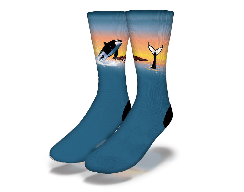 Whale Breach Socks