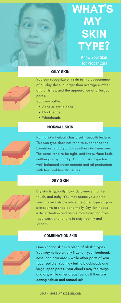 Infographic on different types of skin