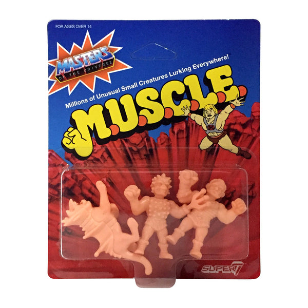 MOTU MUSCLE Wave 2 - Pack B
