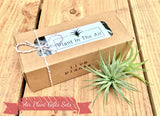 Air Plant Gift Sets - Available in sets of 2, 3 and 4