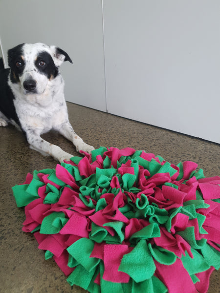 WOOFERS WORLD Snuffle Mat - RENTAL per day