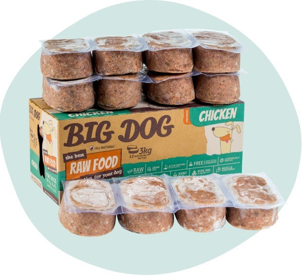 BIG DOG Chicken Raw Food (frozen)