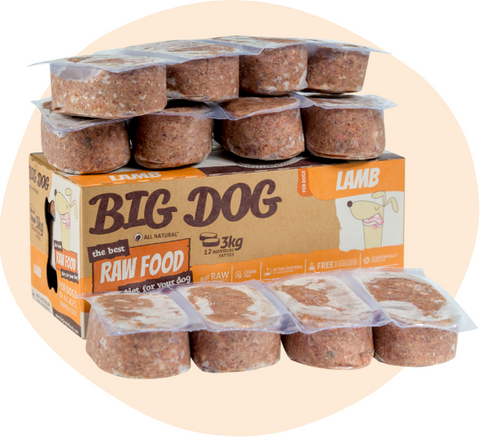 BIG DOG Lamb Raw Food (frozen)