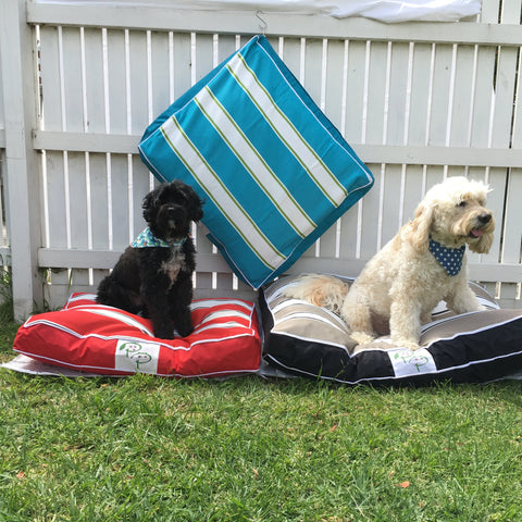 PET POUCH Portsea Dog Bed