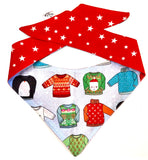 PET POUCH - Neckerchief / Bandana  - Festive