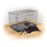 KAZOO Dog Crate - RENTAL per week