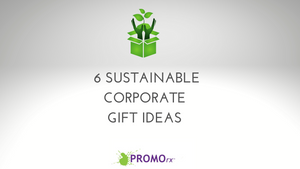 6 Sustainable Corporate Gift Ideas