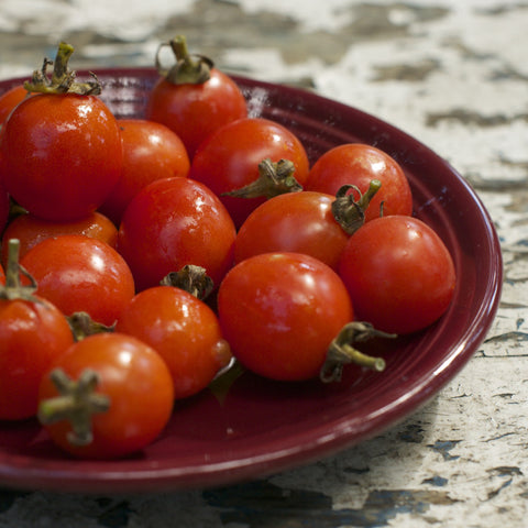 German Cascade Tomato Seeds