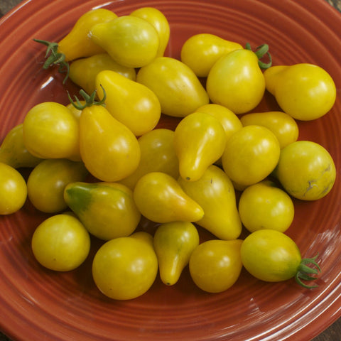 Yellow Pear Cherry Tomato Seeds
