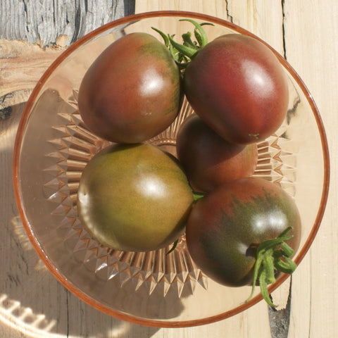 Russian Chocolate Tomato Seeds
