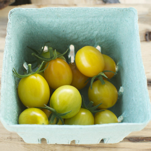 Golden Egg Yellow Cherry Tomato Seeds