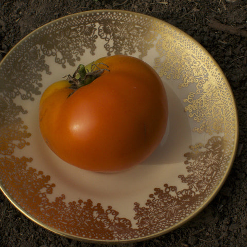 Orange Persimmon Tomato Seeds