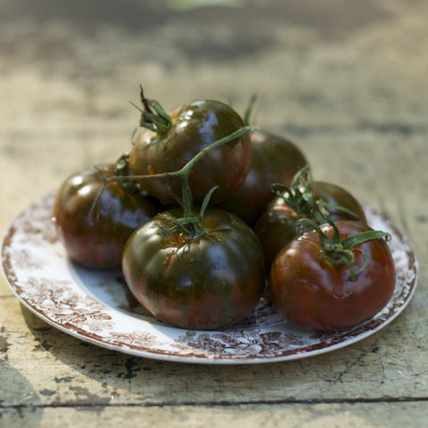 Brown and Black Boar Tomato Seeds
