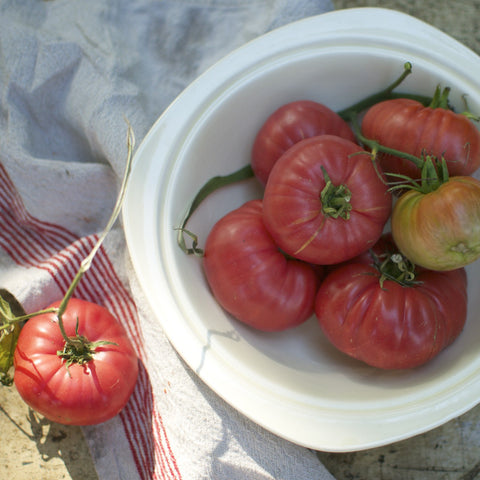 Le Doux Special Red Heirloom Tomato Seeds