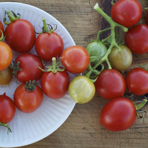 Riesentraube Red Cherry Tomato Seeds