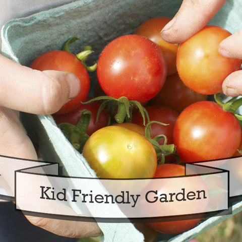 Kid Friendly Garden Seed Gift Set