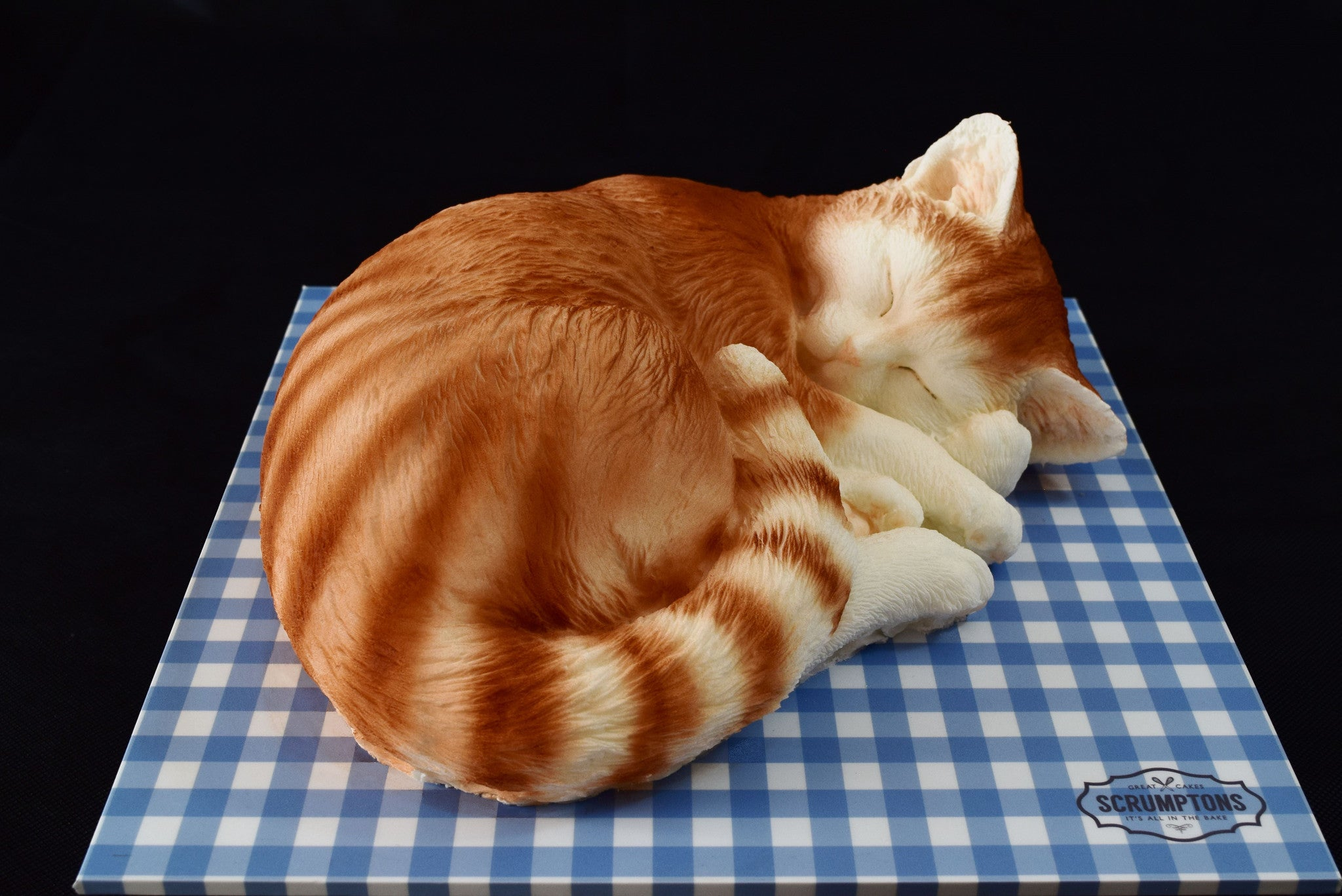 Aston Martin Offers >> Cat Cake | Scrumptons