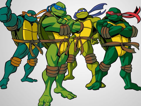 Teenage Mutant Ninja Turtles Biography and Art Gallery Collection