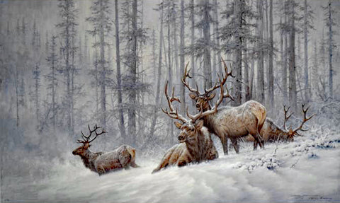 Mountain Majesty Bull Elk Larry Fanning Lithograph Print on Paper Artist Hand Signed and Numbered