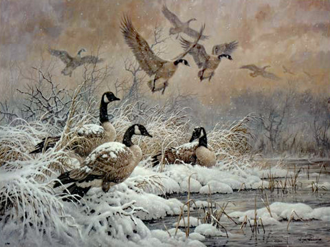 Winter Retreat Canada Geese Larry Fanning Lithograph Print on Paper Artist Hand Signed and Numbered