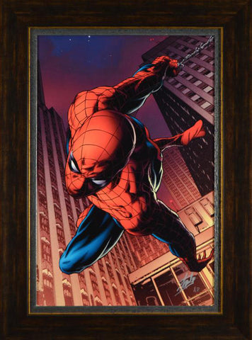 Amazing Spider Man 641 Marvel Comics Artist Joe Quesada Artist Proof Fine Art Canvas Giclee Print Stan Lee Hand Signed and AP Numbered