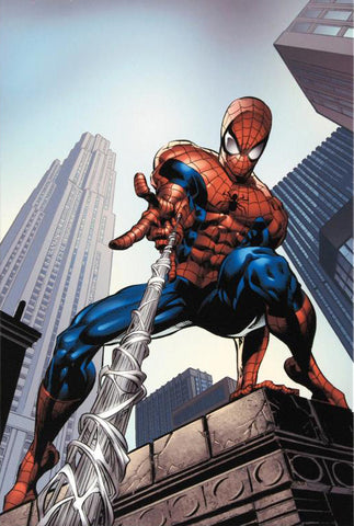 Amazing Spider Man 520 Marvel Comics Artist Mike Deodato Fine Art Canvas Giclee Print Numbered
