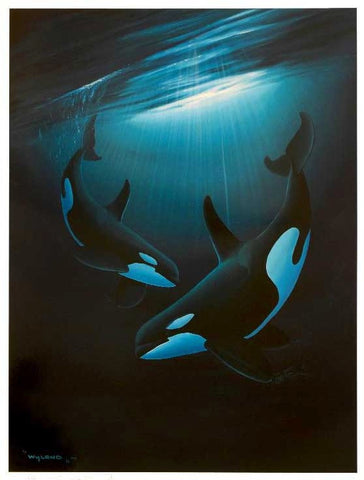 Ancient Orca Dance Wyland Lithograph Print Artist Hand Signed and Numbered