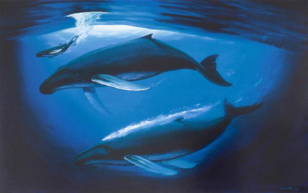 A Sea of Life Wyland Fine Art Lithograph Print Artist Hand Signed and Numbered