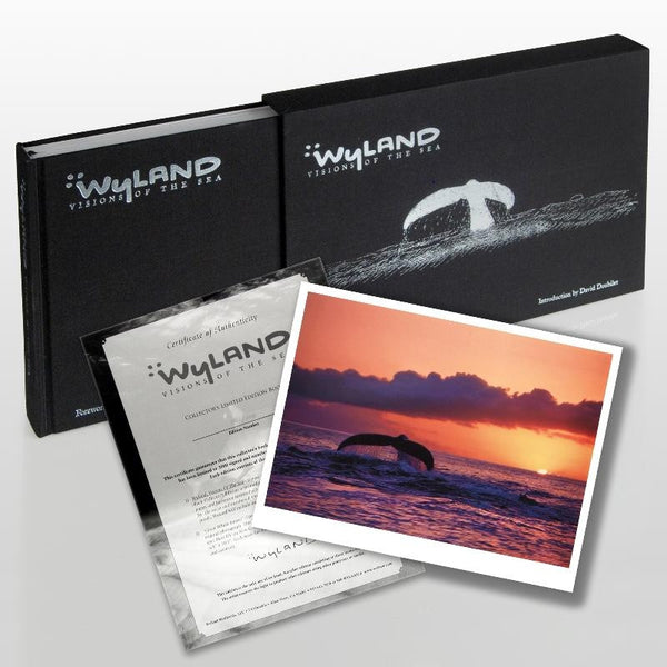 Wyland Visions Of The Sea Deluxe Collectors Hardcover Art Book Artist Hand Signed and Numbered