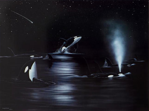 Orca Starry Night Wyland Lithograph Print Artist Hand Signed and Numbered