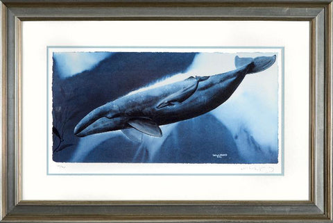 Gray Whale Waters Wyland Lithograph Print Artist Hand Signed Numbered and Framed