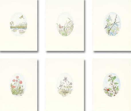 Untitled Flower Etchings Set Anna Weber Artist Hand Signed and Numbered
