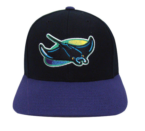Tampa Bay Rays Snapback Retro Vintage Logo Cap Hat Black Purple
