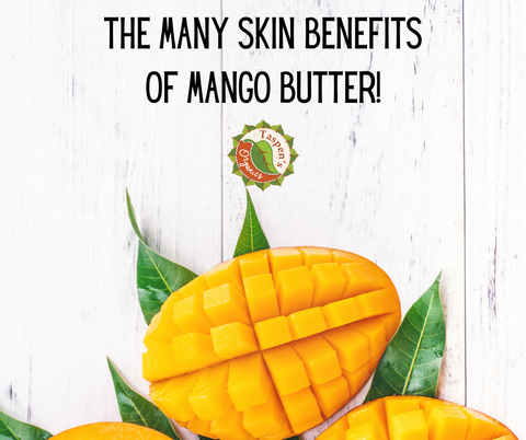 The Many Skin Benefits of Mango Butter!